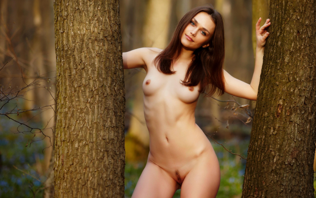 5616x3159 pix. Wallpaper trimmed pussy, nude, forest, tits, brunette, outdoors