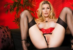blonde, ass, pussy, tits, panties, heather vandeven, legs spread, stockings wallpaper