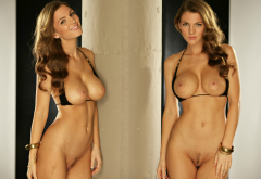 jillian beyor, collage, big tits, boobs, model, bikini, brunette, tits out, trimmed pussy wallpaper