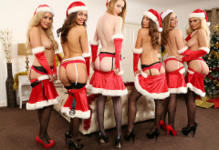 rosa, serena, abigail b, alice brookes, boobs, christmas, tits, six, black stockings, topless, sexy, ass, red panties, suspenders wallpaper
