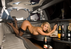 abbey brooks, ass, legs, stockings, high heels, champagne, car, limousine wallpaper