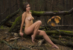naked, brunette, tits, sexy legs, forestm log wallpaper
