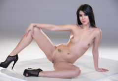 lady dee, jody d, lady devon, labia, shaved pussy, tits, spread legs, brunette wallpaper