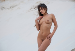 tanned, nude, tits, boobs, belly, nipples, trimmed pubic hair, outdoors wallpaper
