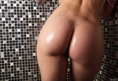 lilian a, mila, demi fray, ass, wet, shower wallpaper