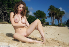 emily addison, penthouse, boobs, big tits, brunette, shaved pussy, beach, tropics, brunette wallpaper