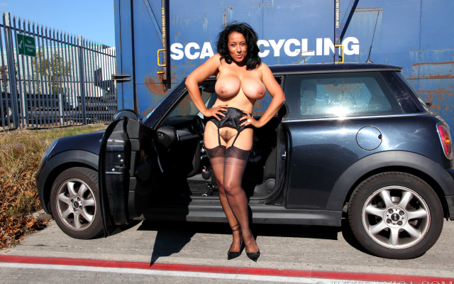 2999x1999 pix. Wallpaper danica collins, danica, haired pussy, mature, boobs, big tits, car, stockings, black stockings, suspenders