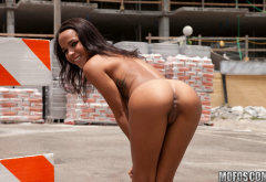 hollie berry, ass, pussy, brunette, exotic, public wallpaper