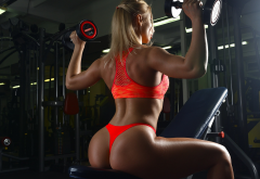 blonde, tanned, back, dumbbells, sportswear, red panties, fitness model, sports bra, gym, hot ass wallpaper