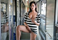tess lyndon, alana, train, brunette, shaved pussy, tits out, small tits wallpaper