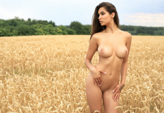 faith, photodromm, brunette, field, naked, shaved pussy, boobs, big tits wallpaper