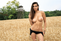 faith, photodromm, brunette, tanned, field, boobs, big tits, topless wallpaper