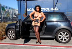 danica collins, danica, haired pussy, mature, boobs, big tits, car, stockings, black stockings, suspenders wallpaper
