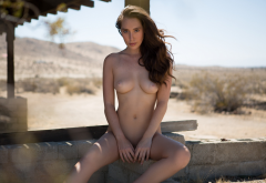 willa prescott, playboy, naked, brunette, boobs, tits, legs, sexy, hot wallpaper