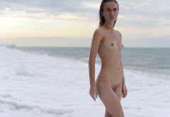 naked, nude, wet, sea, brunette, belly, boobs, tits, trimmed pussy wallpaper