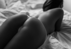 ass, panties, in bed, monochrome, white panties, thong wallpaper