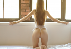 kneeling, in bed, window, long hair, ass, white lingerie, back, sexy ass wallpaper