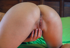 jasmine jazz, doggy, ass, anus, labia, meat curtains, pussy, shaved pussy, naked wallpaper