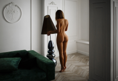 naked, ass, tanned, back, legs, tits wallpaper