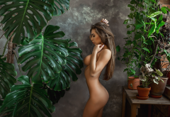 naked, plants, brunette, hips, boobs, big tits, ass, sexy wallpaper