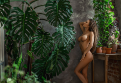 naked, plants, brunette, hips, boobs, big tits, tanned wallpaper