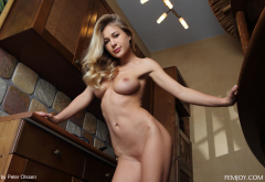 candice b, felicity, candy d, darina l, naked, shaved pussy, boobs, big tits, kitchen wallpaper