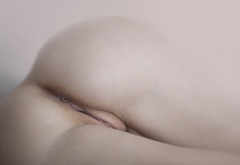 ass, pussy, labia, shaved pussy, anus wallpaper